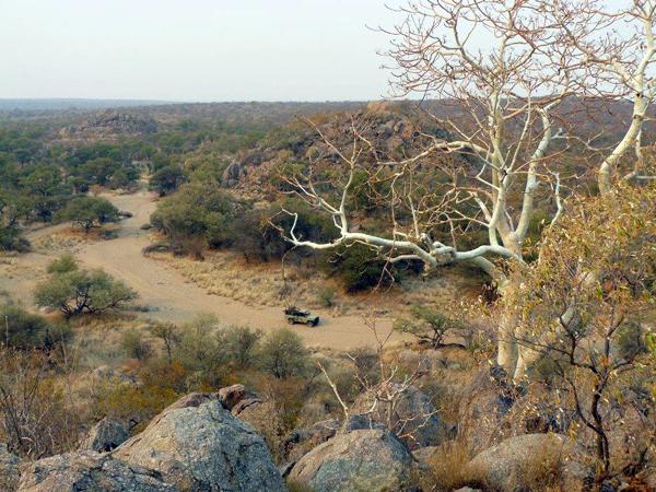 hunting-namibia-021