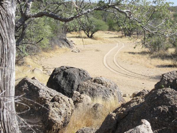 hunting-namibia-059