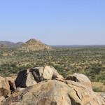 hunting-namibia-071 2