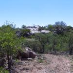 hunting-namibia-079 2