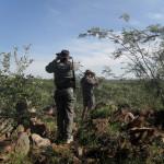 hunting-namibia-100 2