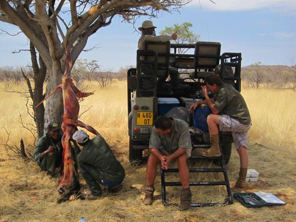 hunting-namibia-020